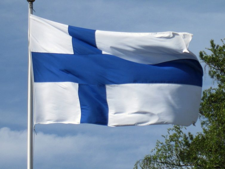 Riklig blåbärsblomning i Finland – Mer än förra året
